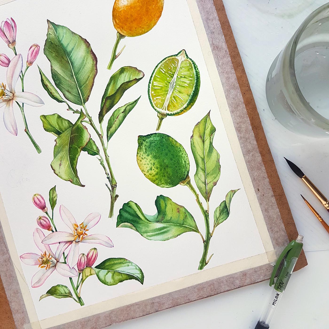 Kateryna Savchenko Lemon Pattern